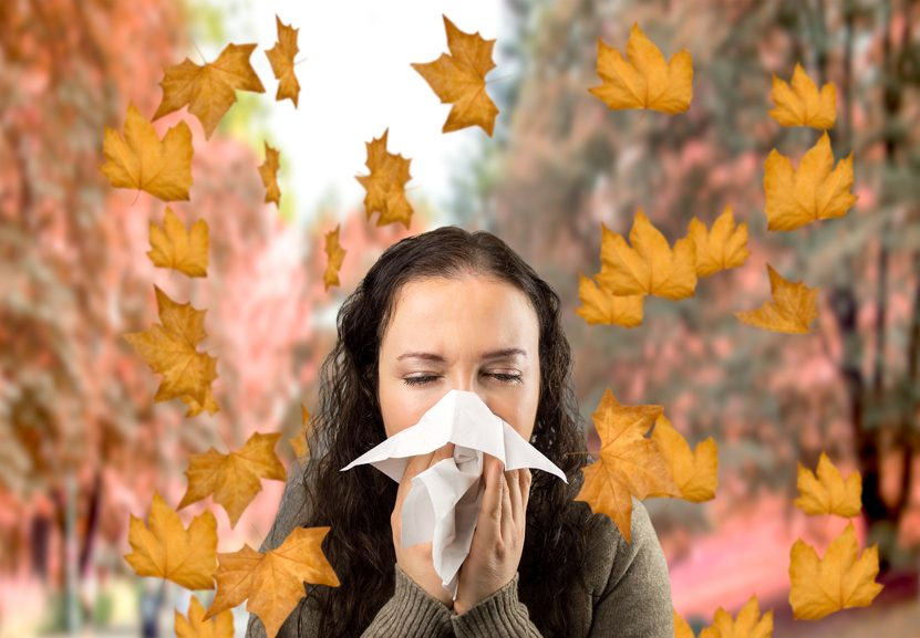 Looking For Allergy Relief Your Humidifier Or Dehumidifier Could Help Aham Consumer Blog