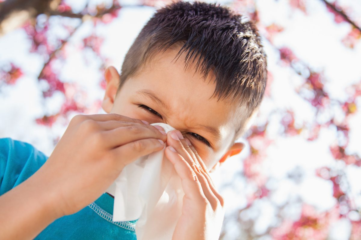 6 Ways You Can Reduce and Remove Allergens in Your Home