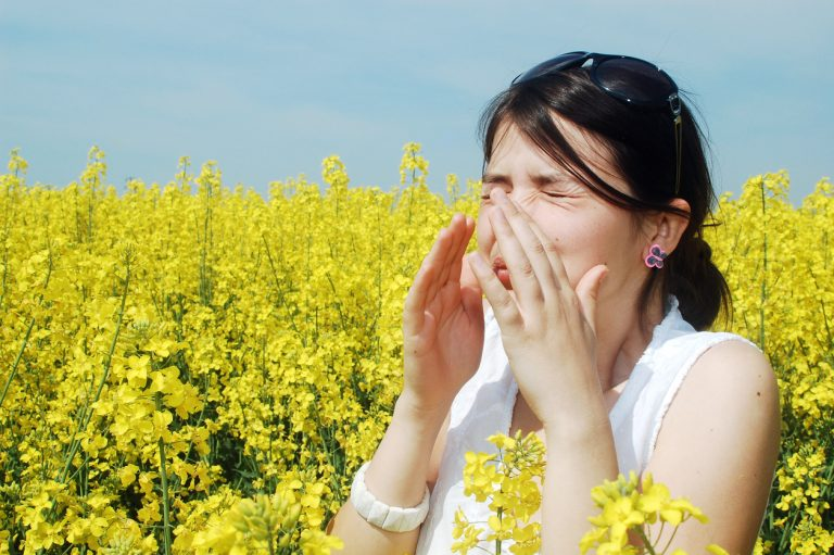 The keys to an allergy-free home